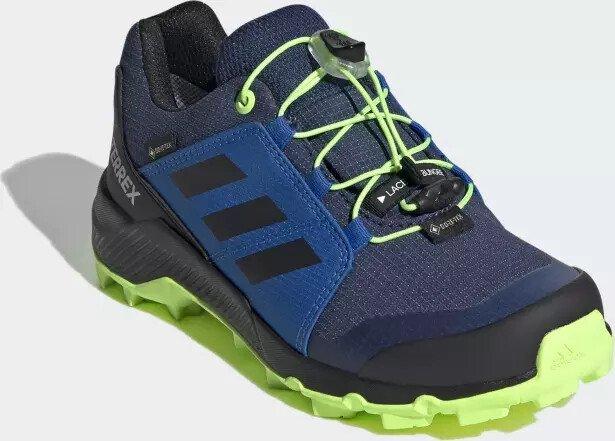 adidas TERREX GORE-TEX WANDERSCHUH - blau